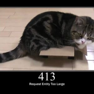 HTTP Error 413 Explained: Request Entity Too Large