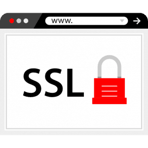 "6 Fixes For The ""ssl_error_rx_record_too_long"" Error"